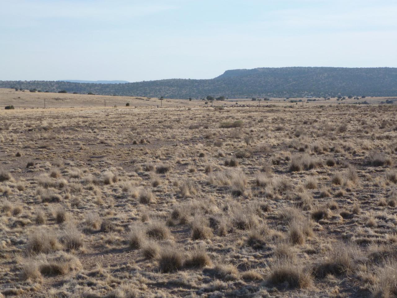 165 Sierra Verde Ranch - Photo 1