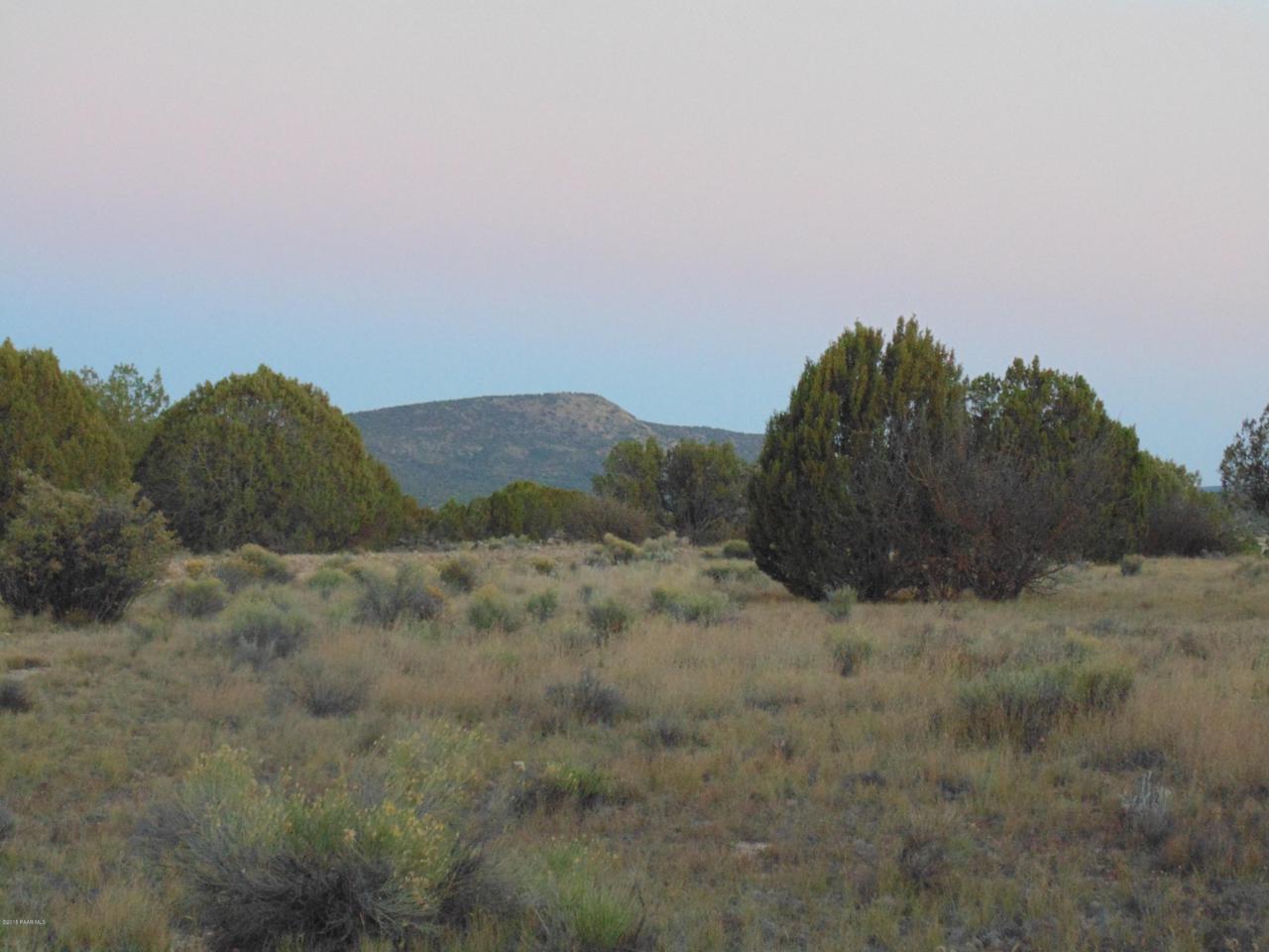 Lot 79 Sierra Verde Ranch - Photo 1