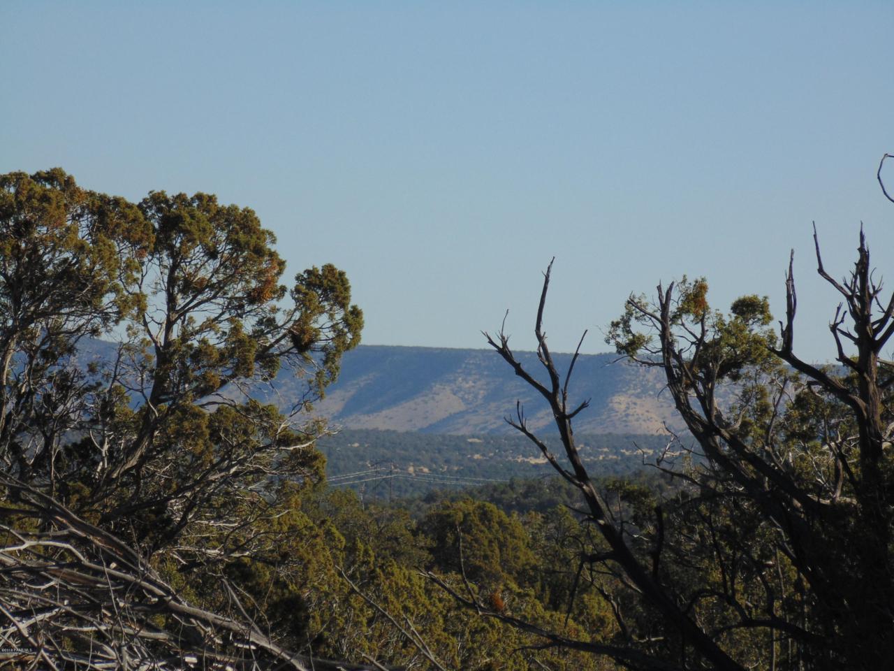 1424 Sierra Verde Ranch - Photo 1