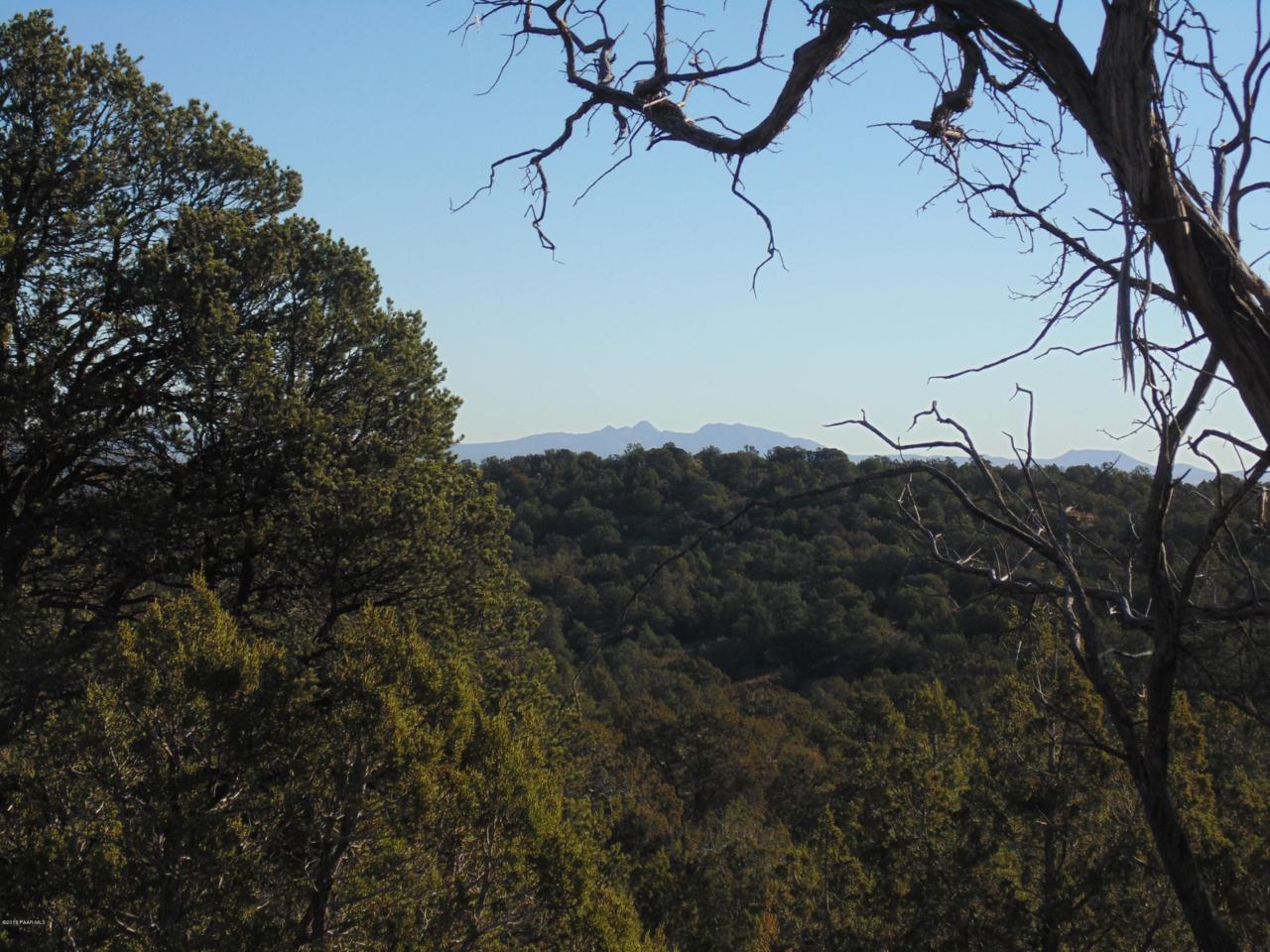 1425 Sierra Verde Ranch - Photo 1