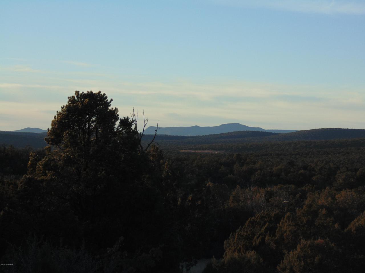 373 Sierra Verde Ranch - Photo 1