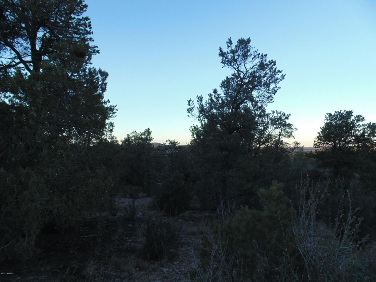 375 Sierra Verde Ranch - Photo 1