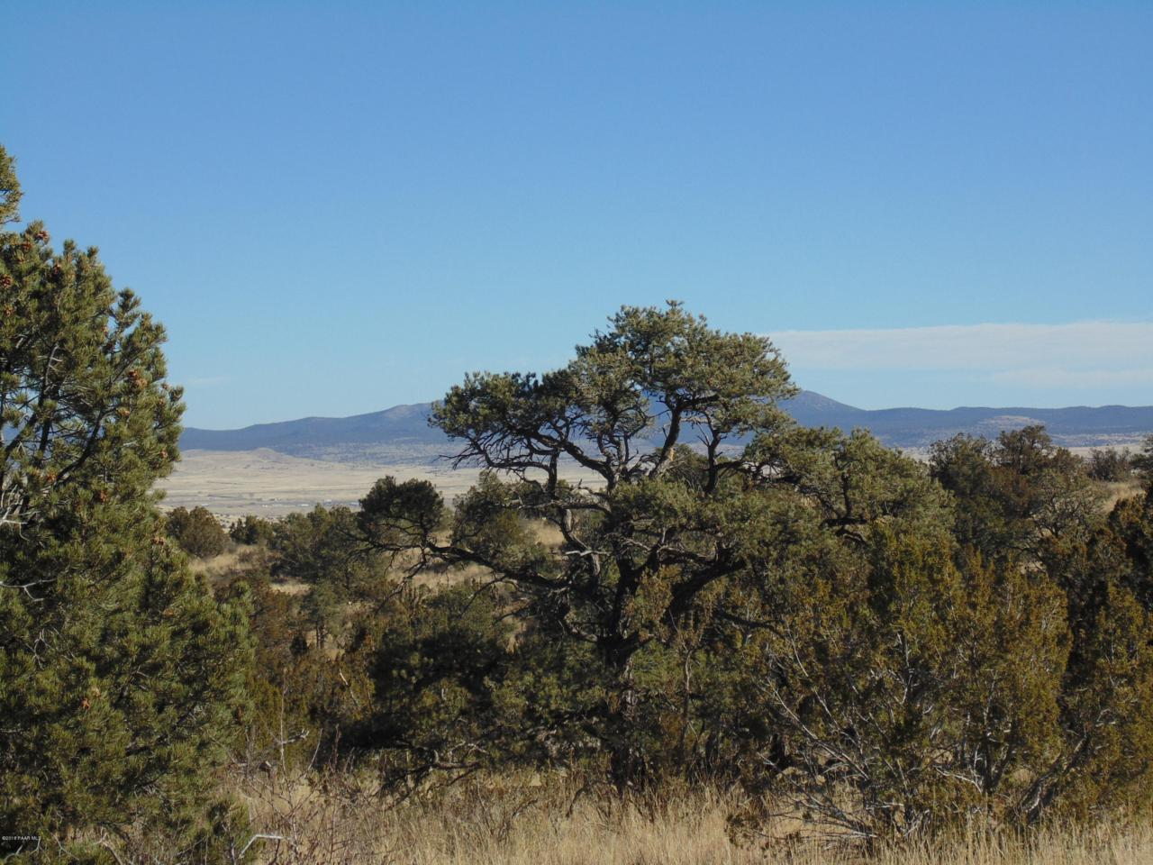 701 Sierra Verde Ranch - Photo 1