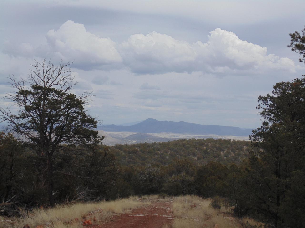 493 High Sierra Road - Photo 1