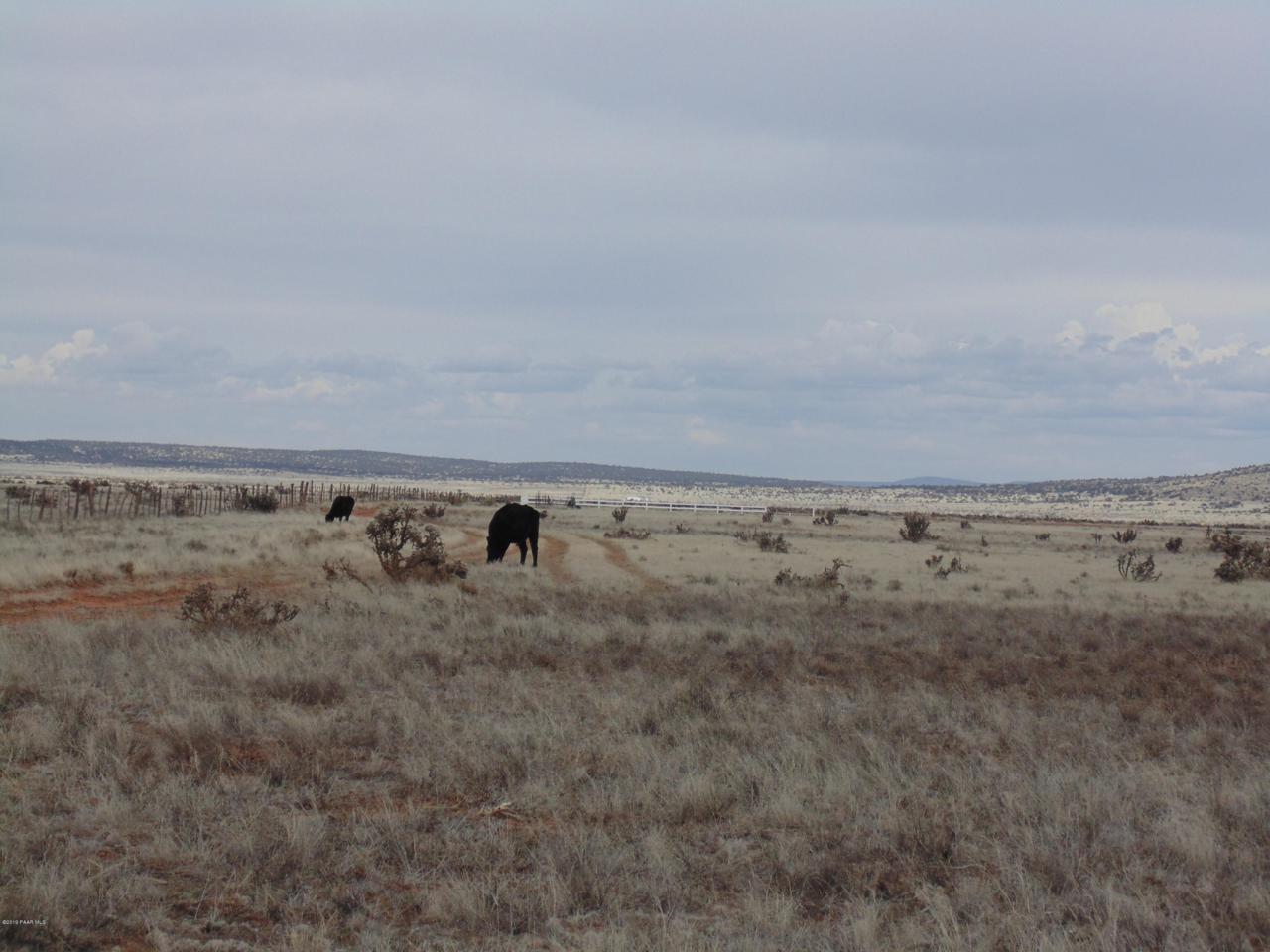 1098 Sierra Verde Ranch - Photo 1