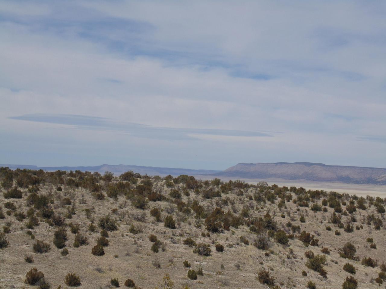 1288 Sierra Verde Ranch - Photo 1