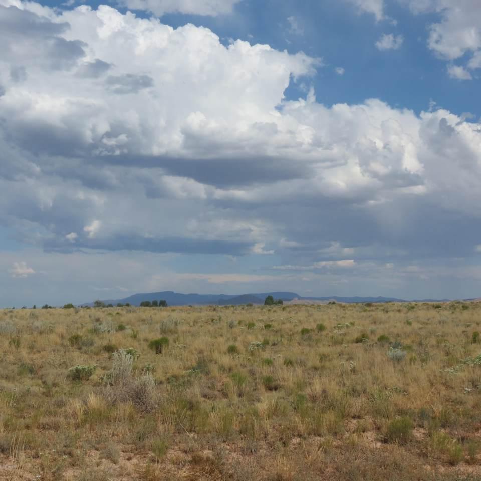 26600 Bull Snake Road - Photo 1