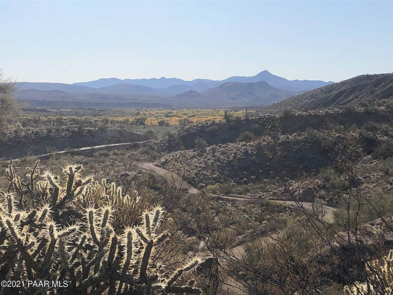 163 Acres Banegas Road - Photo 1