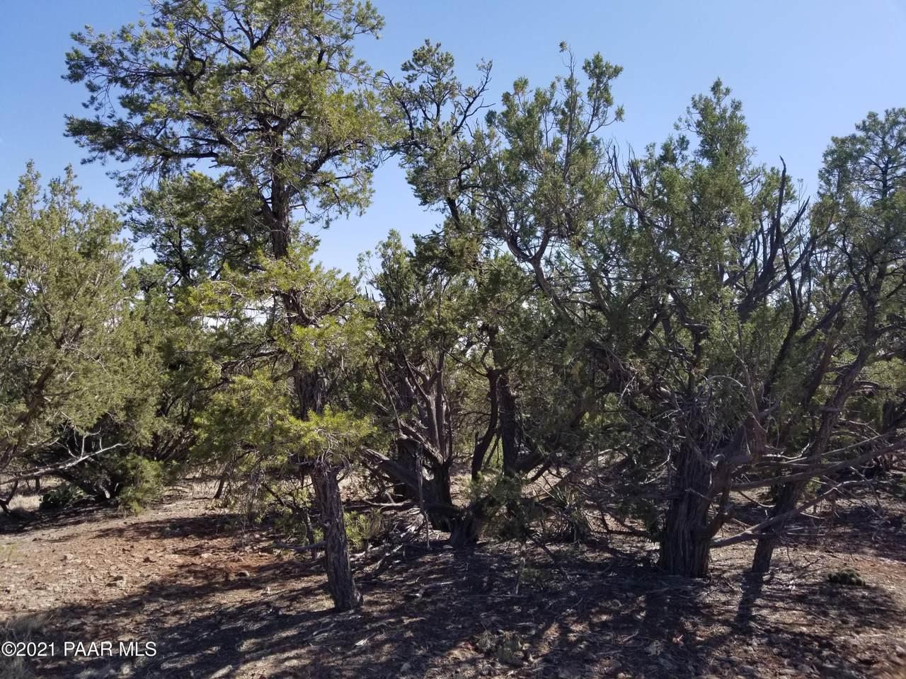 0 Sierra Verde Ranch - Photo 1