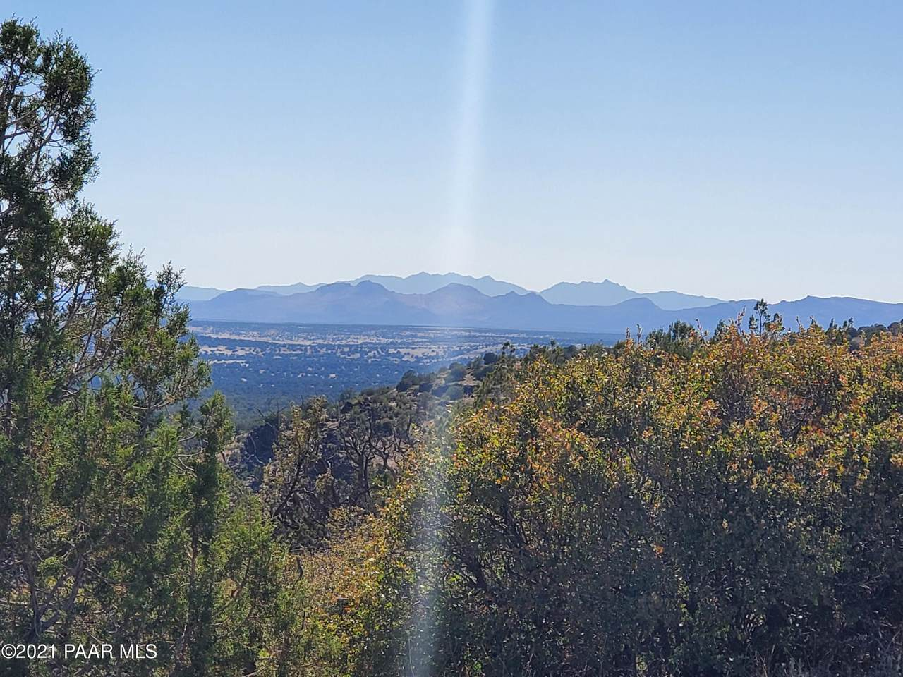 1339 Peaceful View - Photo 1