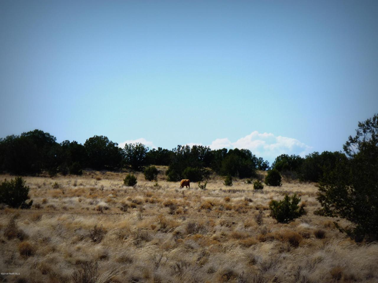 01 Headwater Ranch - Photo 1