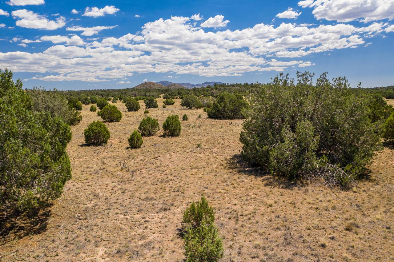 4905 Sterling Ranch Road - Photo 1