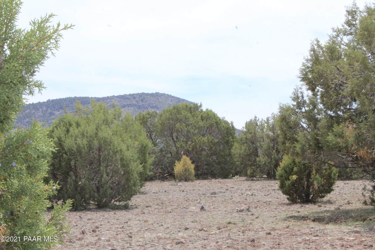Lot 306 Olivas Alone - Photo 1