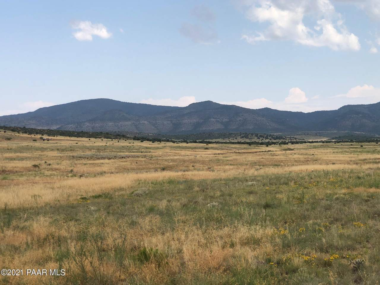 Lot D Coyote Run Road - Photo 1