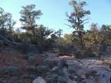 1014 Sierra Verde Ranch - Photo 11