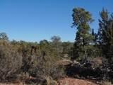 1014 Sierra Verde Ranch - Photo 14