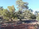 1014 Sierra Verde Ranch - Photo 8