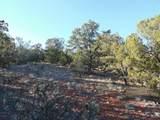1014 Sierra Verde Ranch - Photo 9