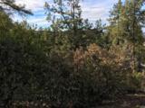 1572 Scotch Pine Drive - Photo 6