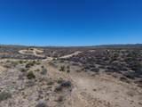 7800 Rolling Hills Drive - Photo 19