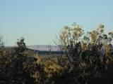 247 High Sierra - Photo 15