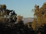 247 High Sierra - Photo 16