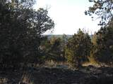 247 High Sierra - Photo 3