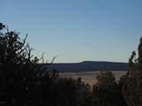 247 High Sierra - Photo 5
