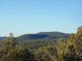 247 High Sierra - Photo 7