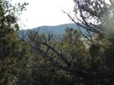 247 High Sierra - Photo 8