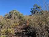 610 Autumn Oak Way - Photo 11