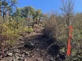 610 Autumn Oak Way - Photo 13