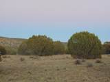 Lot 71 Sierra Verde Ranch - Photo 10