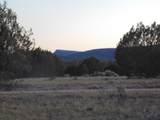 Lot 71 Sierra Verde Ranch - Photo 14
