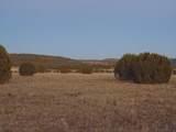 Lot 71 Sierra Verde Ranch - Photo 19