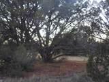 Lot 71 Sierra Verde Ranch - Photo 5