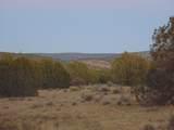 Lot 71 Sierra Verde Ranch - Photo 7