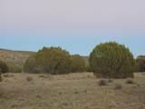 Lot 79 Sierra Verde Ranch - Photo 11