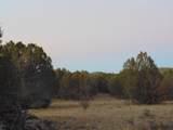 Lot 79 Sierra Verde Ranch - Photo 13
