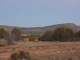 Lot 79 Sierra Verde Ranch - Photo 16