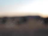 Lot 79 Sierra Verde Ranch - Photo 17