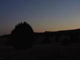 Lot 79 Sierra Verde Ranch - Photo 19