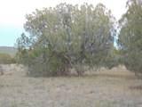 Lot 79 Sierra Verde Ranch - Photo 3