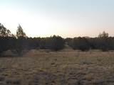 Lot 79 Sierra Verde Ranch - Photo 5