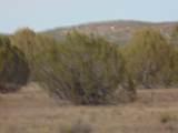 Lot 79 Sierra Verde Ranch - Photo 9