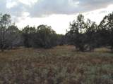 Lot 634 Sierre Verde Ranch - Photo 11
