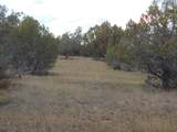 Lot 634 Sierre Verde Ranch - Photo 4