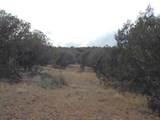 Lot 634 Sierre Verde Ranch - Photo 9