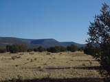 918 Sierra Verde Ranch - Photo 11