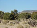 918 Sierra Verde Ranch - Photo 14